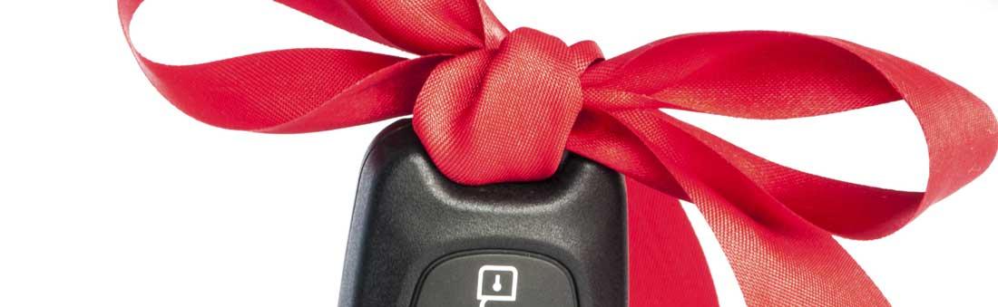 Suzuki Autoschlüssel kopieren